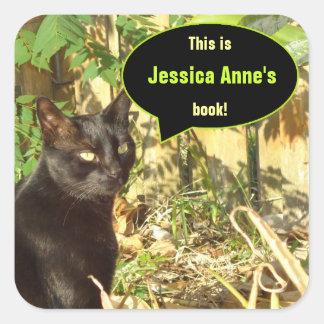 Gato en Bookplates del personalizado de Sun de la Pegatina Cuadrada