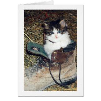 Gato en bota tarjeta pequeña
