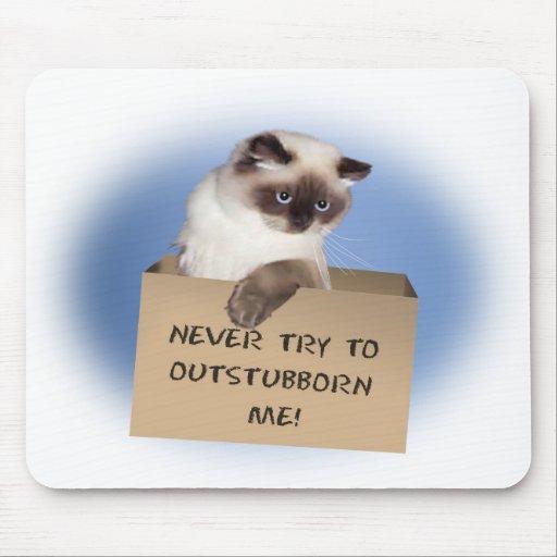 Gato en caja alfombrillas de ratones