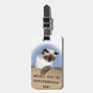 Gato en caja etiquetas bolsa