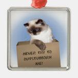 Gato en caja ornamento para reyes magos