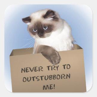 Gato en caja pegatina cuadrada