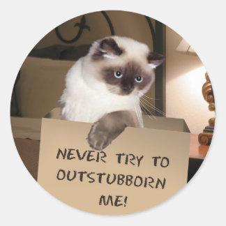 Gato en caja pegatina redonda