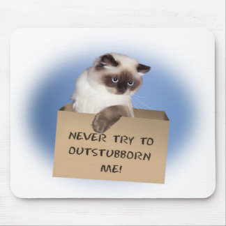 Gato en caja tapete de ratones