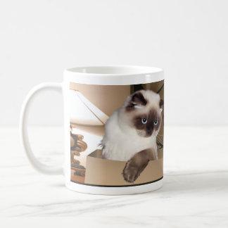 Gato en caja taza