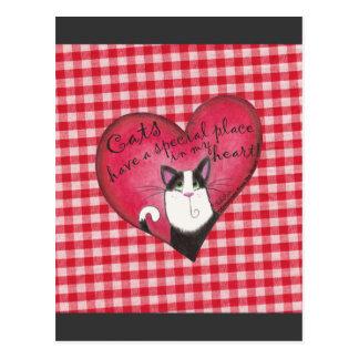 Gato en corazón con el fondo rojo y blanco de la postal