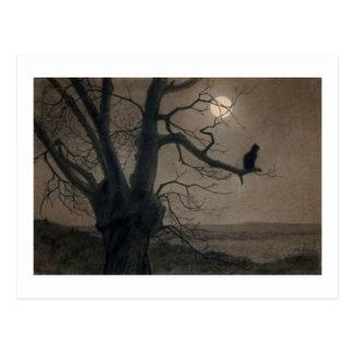 Gato en el claro de luna, Alejandro Steinlen Postales