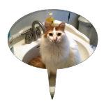 Gato en el fregadero