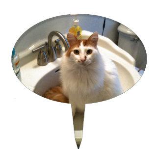 Gato en el fregadero palillos de tarta