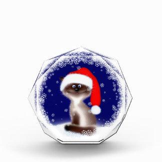 Gato en el gorra de Santa