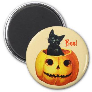 Gato en el imán de Halloween del vintage de la cal