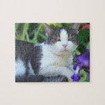 Gato en el jardín rompecabezas con fotos