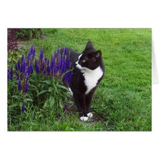 Gato en el jardín tarjeta de felicitación