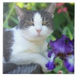 Gato en el jardín teja  ceramica