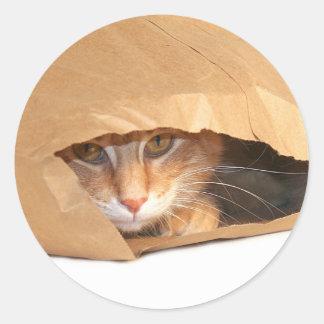Gato en el pegatina del saco