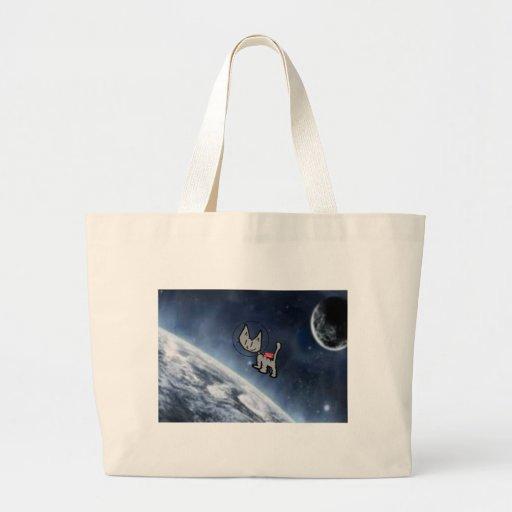 Gato en espacio bolsa
