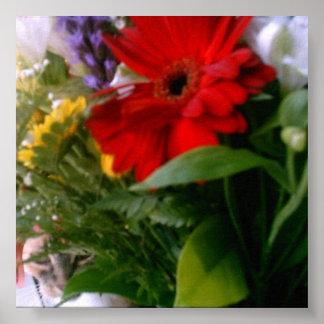 Gato en flores póster