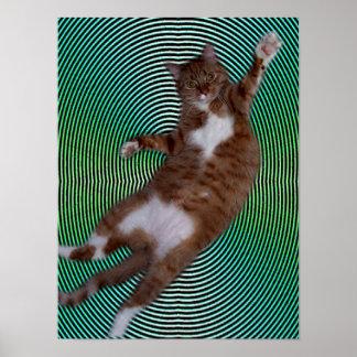 Gato en fondo hipnótico póster
