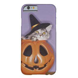 Gato en gorra de la bruja dentro de la calabaza funda de iPhone 6 barely there