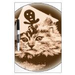 Gato en gorra del pirata