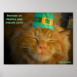 Gato en gorra irlandés con proverbio póster
