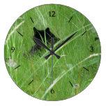 Gato en hierba relojes