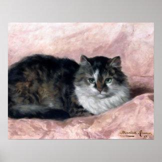 Gato en la almohada rosada de Henriëtte Póster