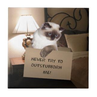 Gato en la caja Himalayan Azulejo Cuadrado Pequeño