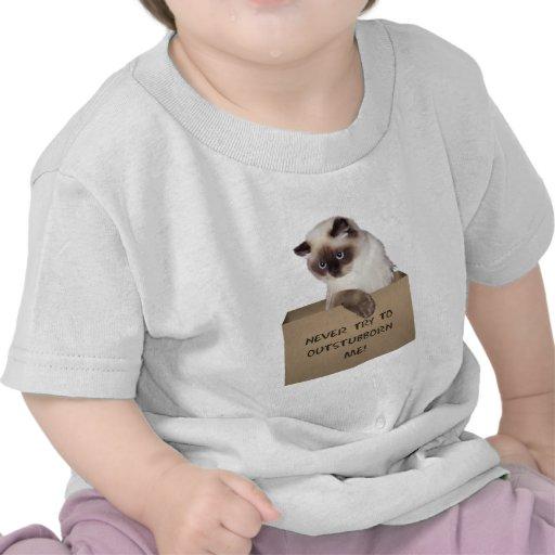 Gato en la caja Himalayan Camisetas
