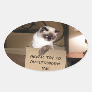 Gato en la caja Himalayan Pegatina Ovalada
