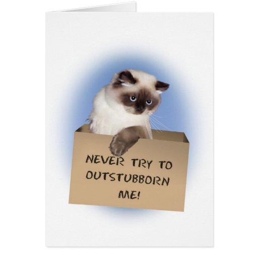 Gato en la caja Himalayan Tarjeta De Felicitación