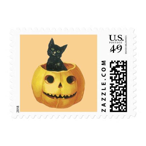Gato en la calabaza sello