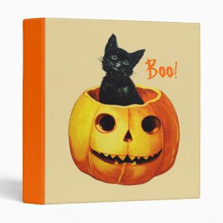 Gato en la carpeta de Halloween de la calabaza