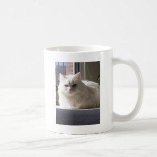 Gato en la casa taza de café