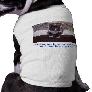 gato en la diversión del perro ropa de mascota