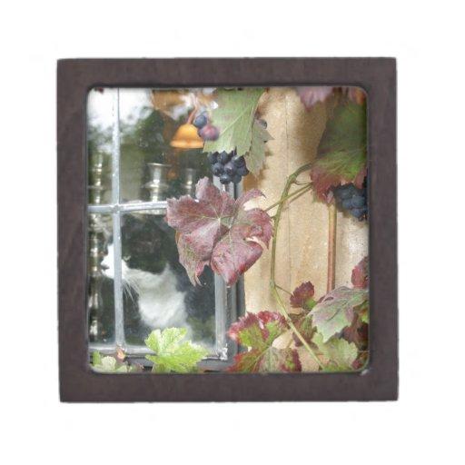Gato en la ventana cajas de recuerdo de calidad