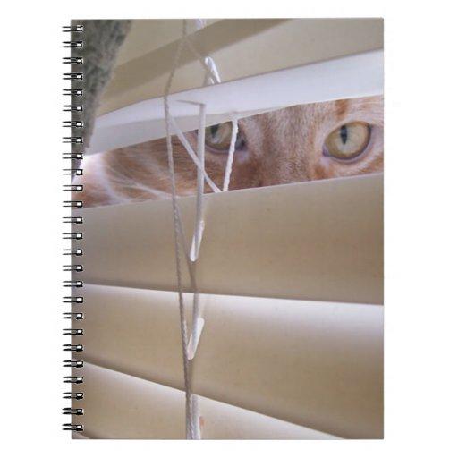 Gato en la ventana cuadernos