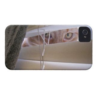 Gato en la ventana Case-Mate iPhone 4 fundas