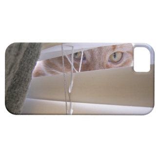 Gato en la ventana iPhone 5 fundas