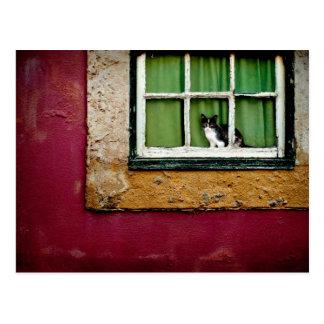 Gato en la ventana postal