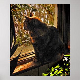 Gato en la ventana póster