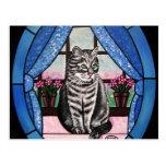 Gato en la ventana tarjeta postal