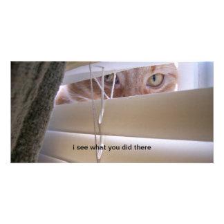 Gato en la ventana - veo lo que usted lo hizo allí tarjeta fotográfica