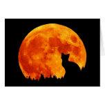 Gato en luna anaranjada llena tarjetas