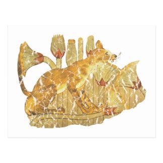 gato en pantano tarjeta postal