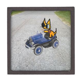 Gato en un coche del juguete caja de regalo de calidad