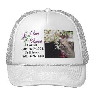 Gato en un gorra… gorras