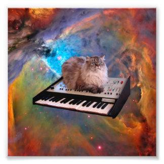 Gato en un teclado en espacio fotografía