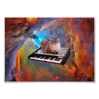 Gato en un teclado en espacio fotografías