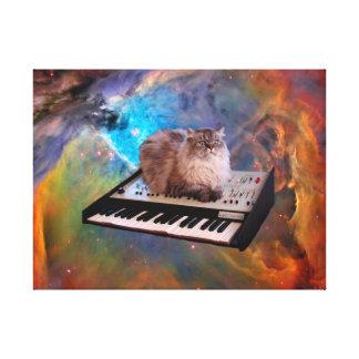 Gato en un teclado en espacio lona envuelta para galerías